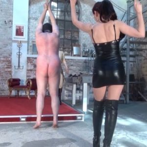 whipping in suspension